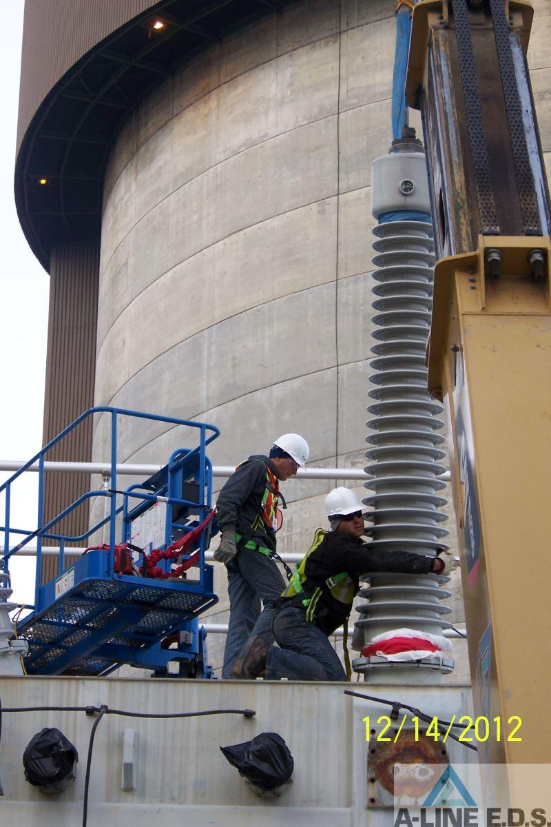 braidwood power plant
